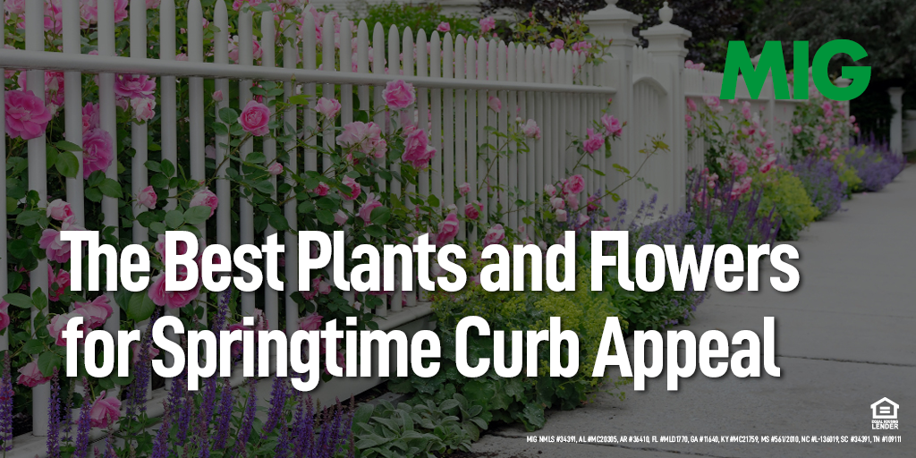 The Best Plants and Flowers for Springtime Curb Appeal
